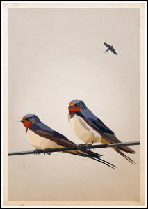 Bildverkstad Swallows Poster