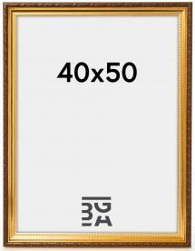 Galleri 1 Fotolijst Abisko Goud 40x50 cm