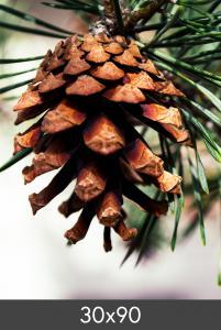 Egen tillverkning - Kundbild Vergroting FineArt Bamboo 290 g