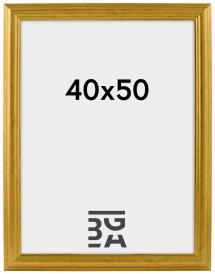 Galleri 1 Västkusten Goud 40x50 cm