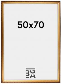 Galleri 1 Abisko Goud 50x70 cm