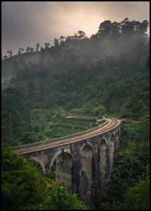 Lagervaror egen produktion Jungle train rails Poster