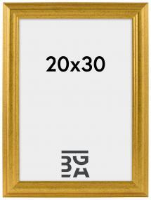 Galleri 1 Västkusten Goud 20x30 cm