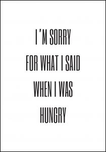 Lagervaror egen produktion I'm sorry for what i said when was hungry Poster