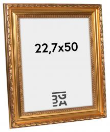 Ramverkstad Fotolijst Birka Premium Goud 22,7x50 cm
