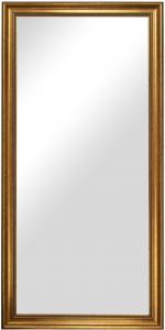 Estancia Spiegel Rokoko Goud 50x100 cm