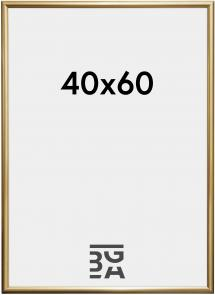 Walther Fotolijst Trendstyle Goud 40x60 cm