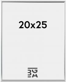 Focus Fotolijst Can-Can Zilver 20x25 cm