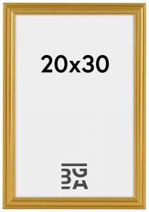 Artlink Fotolijst Frigg Goud 20x30 cm