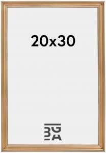 Focus Verona Goud 20x30 cm