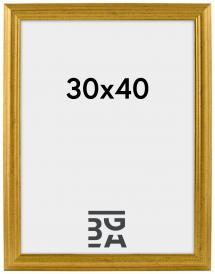 Galleri 1 Västkusten Goud 30x40 cm