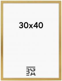 Galleri 1 Frame Gold 30x40 cm
