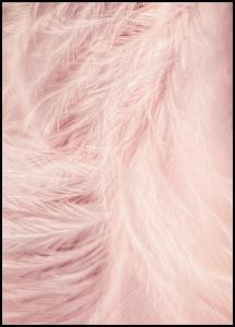 Bildverkstad Pink Feathers Poster