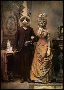 Lagervaror egen produktion Cat Couple Poster