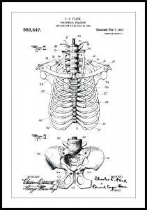 Bildverkstad Patenttekening - Anatomisch skelet II Poster