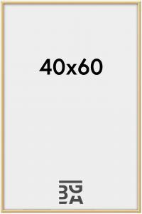 Walther New Lifestyle Acrylglas Goud 40x60 cm