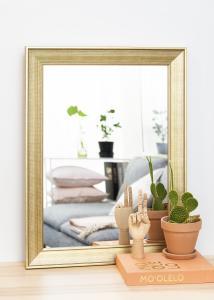 Artlink Spiegel Alina Goud 62x82 cm