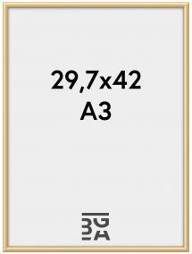 Walther New Lifestyle Plexiglas Goud 29,7x42 cm (A3)