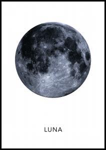 Lagervaror egen produktion Luna Poster