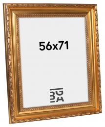 Ramverkstad Fotolijst Birka Premium Goud 56x71 cm