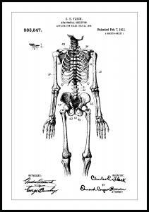 Bildverkstad Patenttekening - Anatomisch skelet I Poster