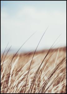 Lagervaror egen produktion Dreamy Grass Poster